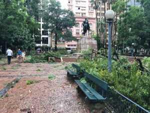Vento de 80 km/h destruiu árvores de deixou parte da cidade sem energia elétrica. Imagem: João Gabriel - Rádio Guaíba