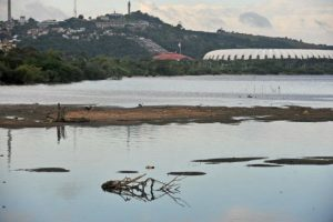 Nível baixo das águas pode ser a causa do surgimento de algas no Guaíba | Foto: Alina Souza / CP