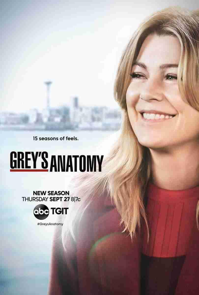 15 Temporada De Grey's Anatomy Assistir 15ª temporada de grey's anatomy: um retorno de poucas