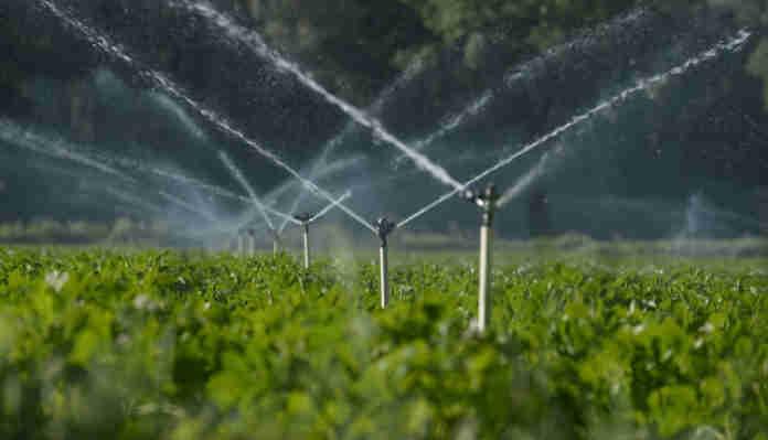 Iniciativa coordenada pelo Ministério do Desenvolvimento Regional já envolve produtores de 39 municípios em três estados