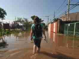 Cheia do Guaíba atinge ruas da região das ilhas   Foto: Ricardo Giusti/Correio do Povo