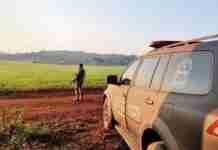 Cerco foi mantido no período noturno e patrulhamento foi retomado ao amanhecer deste sábado na região de Esmeralda | Foto: Divulgação/BM
